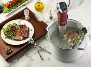 Best Sous Vide Cooker 2020: Top Full Review & Guide