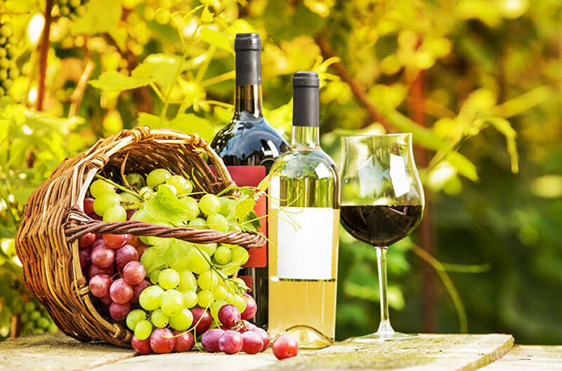Conclusion goblet glass vs wine glass