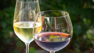 Goblet Glass Vs Wine Glass