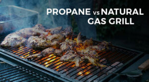 Propane Vs Natural Gas Grill 2021: Top Full Guide